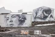 20150315_(Iceland 2015)_13419.jpg
