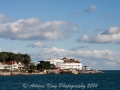 20141004_((Brownsea Island))_7603.jpg