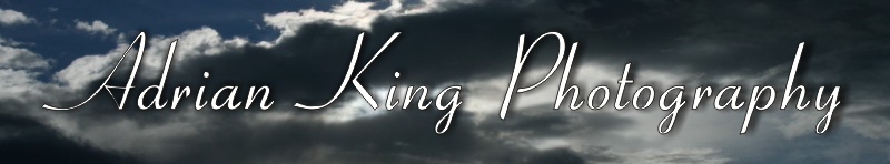 Adrian King Photography Banner